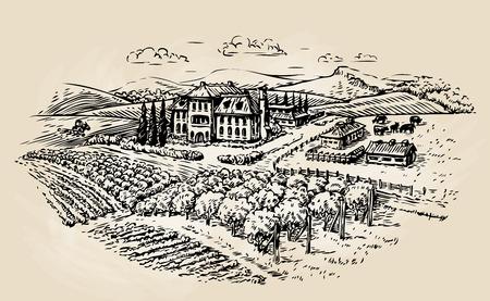 chateau: Farm sketch. Farming, agriculture, vineyard. Vector illustration