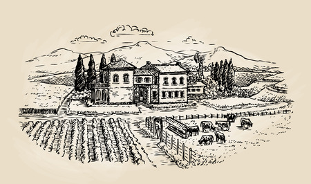 Farm sketch. Farming, agriculture, vineyard or animal husbandry. Vector illustration