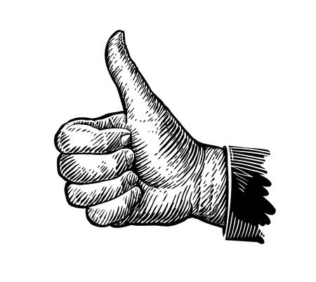 Symbol thumb up. Hand gesture sketch. Vector illustration