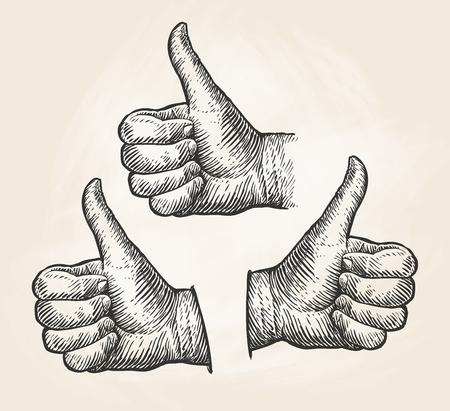 ok: Hand, gesture thumbs up. Vintage sketch vector illustration