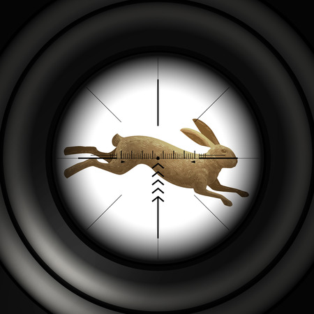 gunfire: Hunting season. Running hare, wild rabbit. Sniper scope, vector illustration