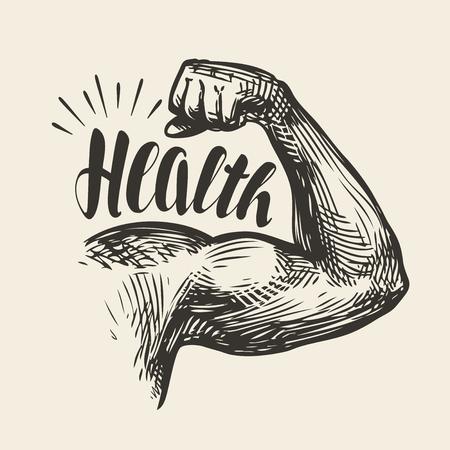 Strong arm muscles, biceps. Gym, bodybuilding health sketch. Lettering, vector illustration Illustration