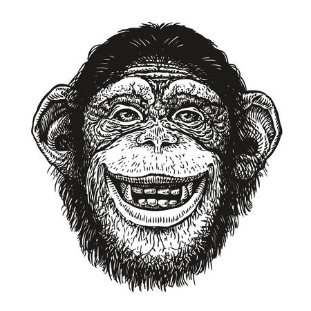 チンパンジーの手の描かれた肖像画。変な猿、ネアンデル タール人。スケッチのベクトル図