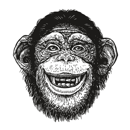 Hand drawn portrait of chimpanzee. Funny monkey, neanderthal man. Sketch vector illustration