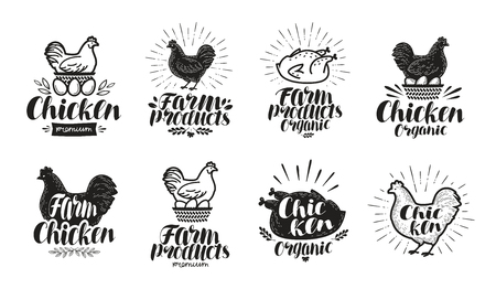 animal silhouette: Chicken label set. Food, poultry farm, meat, egg icon or logo. Lettering vector illustration