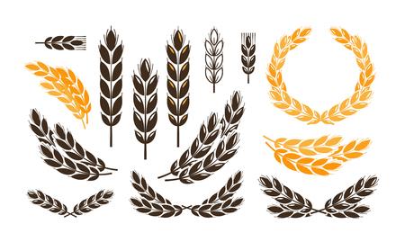 耳小麦、パンのロゴやラベルです。収穫、ベーカリー、パン アイコンを設定します。ベクトル図