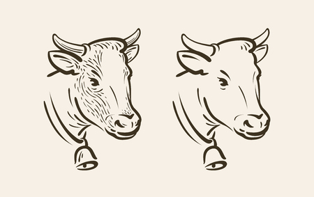 Portrait of cow with bell. Dairy farm, animal symbol or icon. Sketch vector illustration