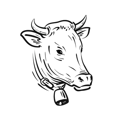 Cow with bell, sketch. Farm animal, vector illustration