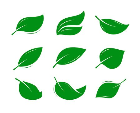 Green leaf logo or label. natural product, nature, eco icon
