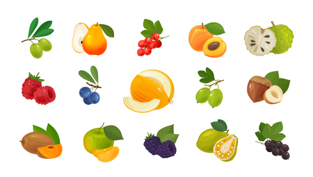 Fruits and berries, set of colored icons. Food concept. Vector illustration Stock Illustratie