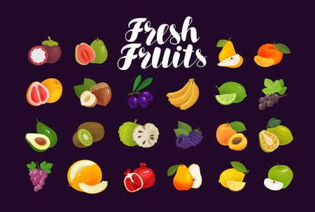 Fruits and berries, set of icons. Food, greengrocery, farm concept. Vector illustration Illustration