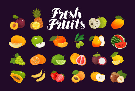 Fruits and berries, set of icons. Food, greengrocery, farm concept. Vector illustration Çizim
