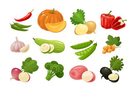 Légumes, ensemble d'icônes colorées. Ferme, alimentation, concept de l'agriculture. Illustration vectorielle Vecteurs