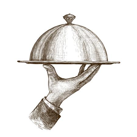 Waiter hand holding cloche serving plate. Vintage sketch vector Çizim