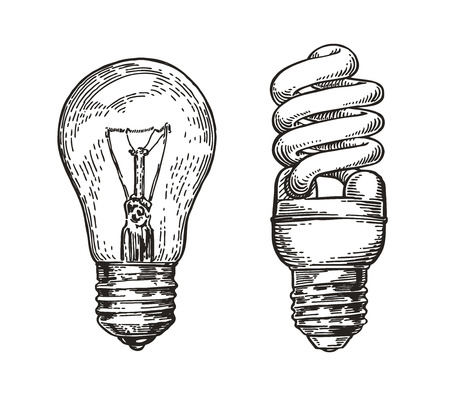 Light bulb sketch. Energy, electric light bulb, electricity concept.