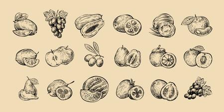 Set of fruits. Fresh food, healthy eating sketch. Ilustrace