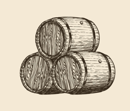 Wooden barrels with wine, sketch.