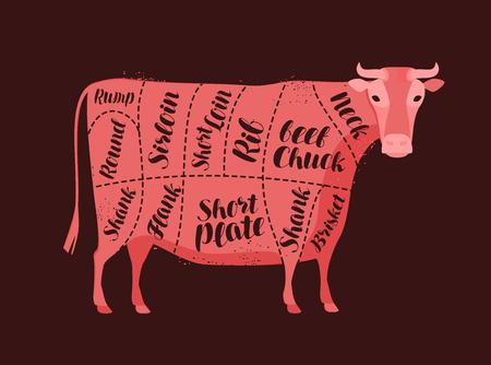 Cow diagram for the butcher. Butcher shop, beef, meat vector Ilustrace