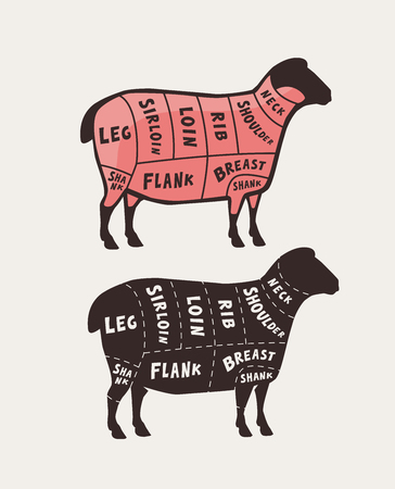 Cut of meat, lamb. Poster butcher diagram and scheme