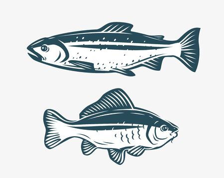 Fish such as trout and carp.