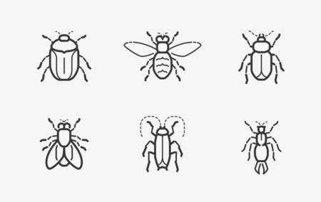 Insects icon set in linear style on white