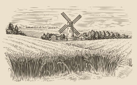 Windmill in a rural landscape. Wheat field sketch vintage vector illustration