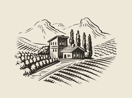 Rural landscape with villa, vineyard fields. Sketch vector illustration for label