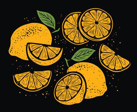 Fresh lemons, leaves. Vibrant juicy ripe citrus. Set of whole, cut in half, sliced on pieces fruits 向量圖像