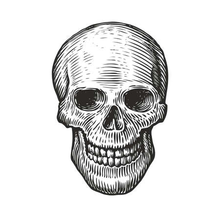 Human skull in vintage gothic style. Engraving sketch vector Vettoriali