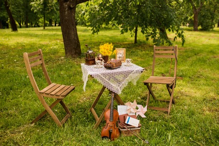 forest tea: decoration in the forest, tea, romantic, the wooden table on a picnic