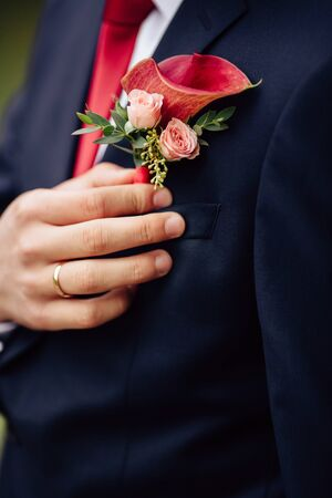 boutonniere: Groom with the flower - the groom boutonniere Stock Photo
