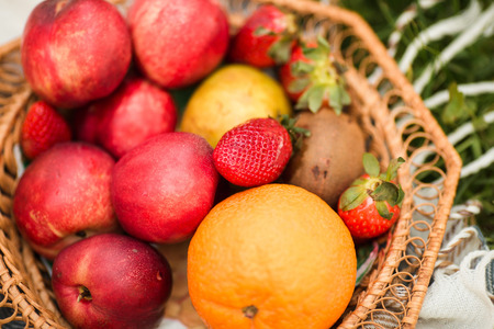 The basket of fresh organic fruits in the garden