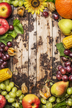 harvest background: harvest fruits, berries and vegetables with sunflower on a rustic wood background, frame, top view