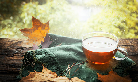 taza de te: taza de t� con hojas de oto�o y servilleta verde en la ventana de madera en travesa�o de la naturaleza de fondo