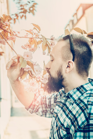 young man with a beard in a plaid shirt, sniffing cherry flowers on a sunny spring street
