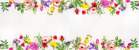 banner for the web site, various multicolored spring flowers, space for text, top view Фото со стока