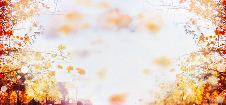 vintage landscape: autumn blurred bokeh background with branches and leaves of trees and blue sky