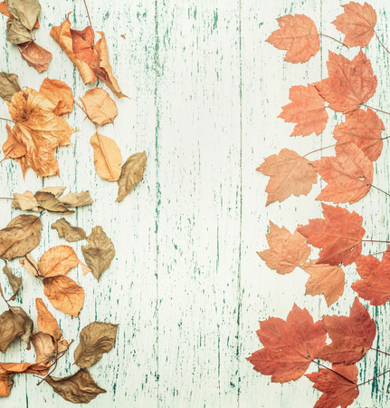 autumn composition, various yellow leaves, on a wooden background, space for text flat lay
