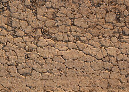 waterless: Desert crust soil closeup background photo