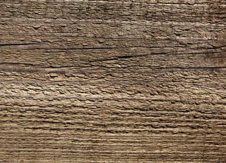 wood surface: Old weathered wood board surface texture photo Stock Photo