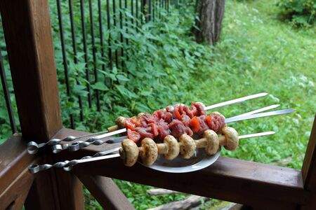 Kebab and mushrooms on the skewers ready to fry closeup photo