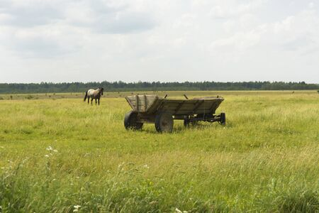 Monastery of Our Lady of Kazan. The fields around the monastery. Cart. Stock Photo