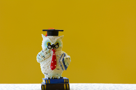 animal figurines: Earthenware figurines, decorative figurines, owl, isolated on a yellow background Stock Photo