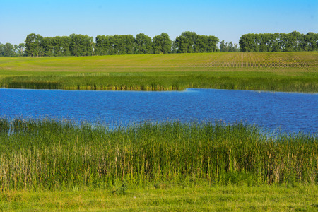 freshwater fish: A beautiful lake for breeding fish. Magnificent view of the lake.