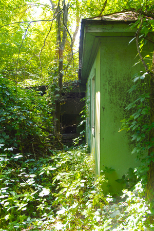 vandalism: Destroyed houses in which people lived in a dead radioactive zone. Consequences of the Chernobyl nuclear disaster and vandalism, August 2017.