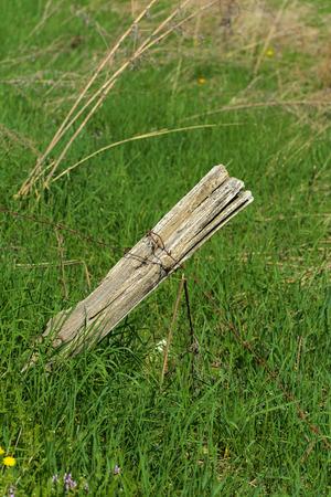 De oude gammele houten pilaar van het hek en roestig prikkeldraad erop tegen de achtergrond van sappig groen gras.