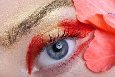 eyelids: Colorful eye makeup on the background color. Stock Photo