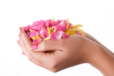 Beautiful pink nails on a white background with flowers.