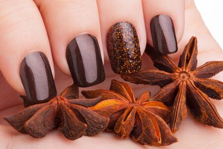 cosmetic lacquer: Beautiful brown nails close up and cinnamon.