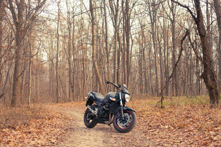 Black stylish sport motorcycle in autumn forest. Editorial